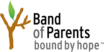 Band of Parents Play Like a Pro Charity Event
